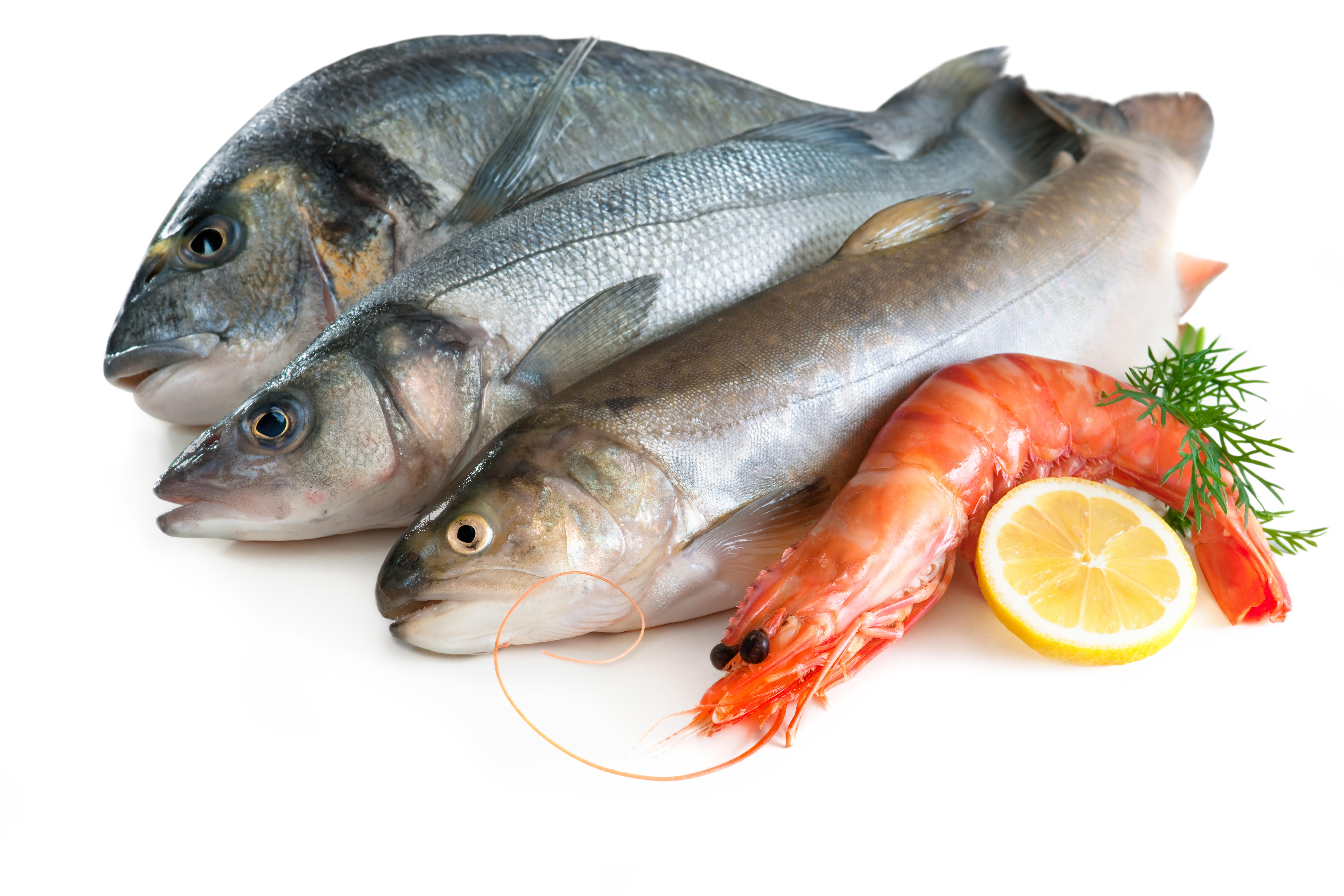 Two servings of fish weekly may help prevent hearing loss for What fish is safe to eat