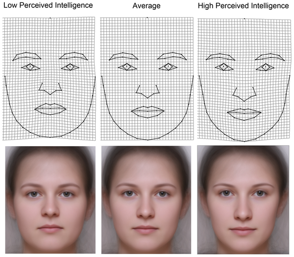 Women's facial features did not predict IQ