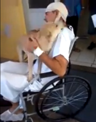 Dog reunites with sick owner after eight days of waiting outside hospital