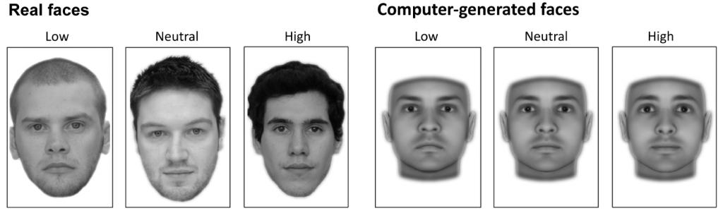 Faces, ranging from low to high trustworthiness, Courtesy of Journal of Neuroscience