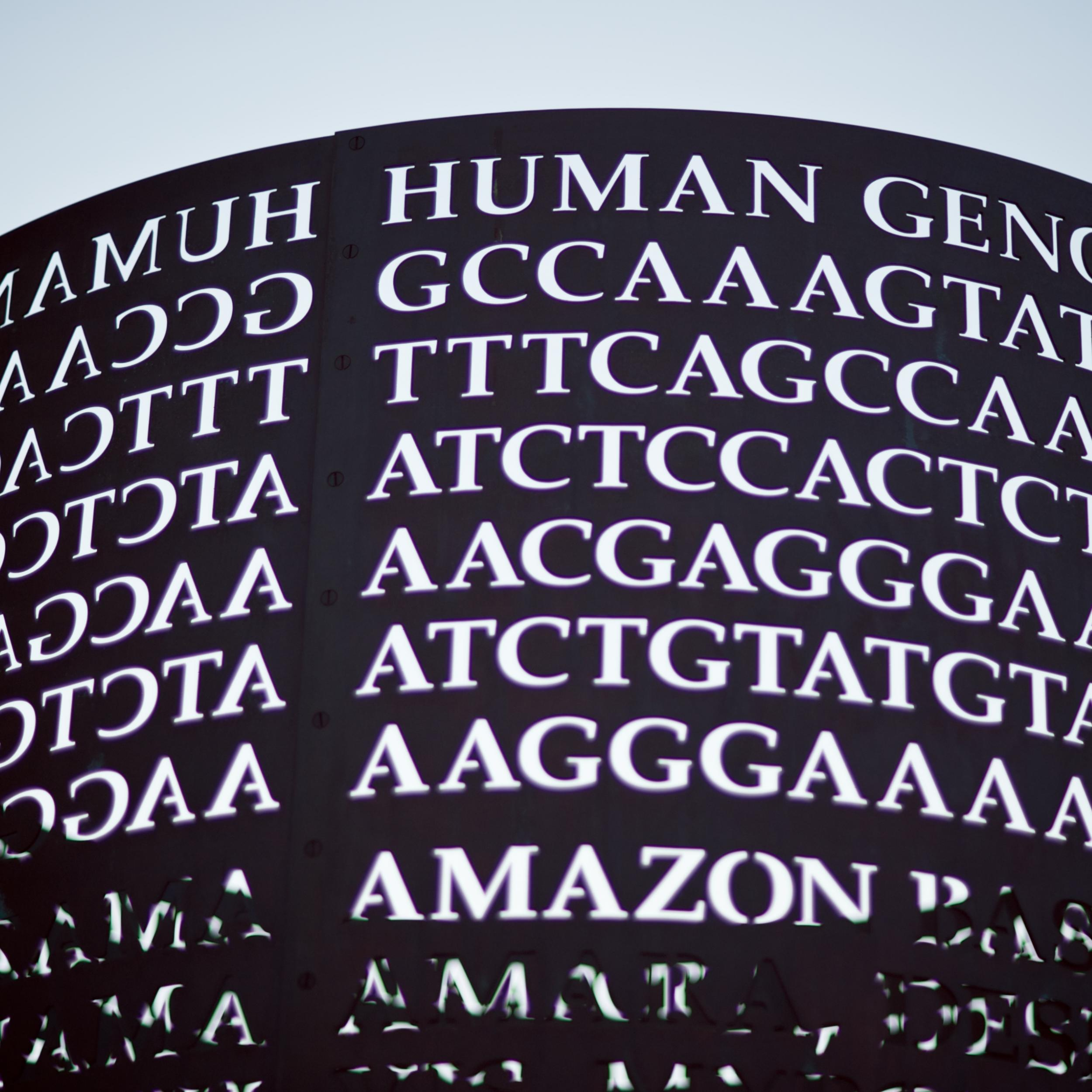 Human Genome Decoded
