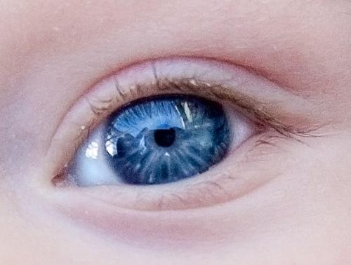 In fact i remember when i first joined here i made a thread on eye colour, and i think it