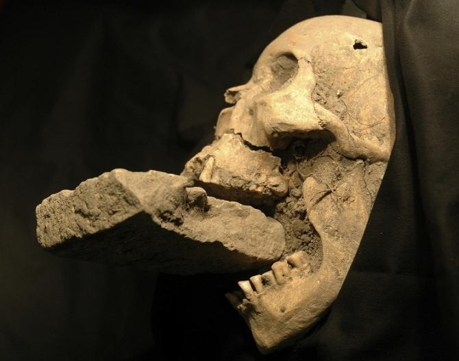 """The remains of a female """"vampire"""" from 16th-century Venice. Italian researchers believe they have found the remains of a female """"vampire"""" from 16th-century Venice, buried with a brick in her mouth to prevent her feasting on plague vict"""