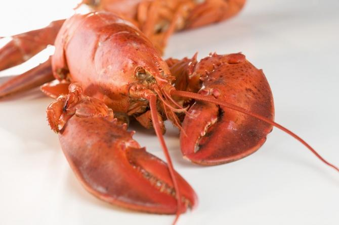 Eating one portion of seafood on a weekly basis may cut your heart attack risk by 50 percent, according to experts.