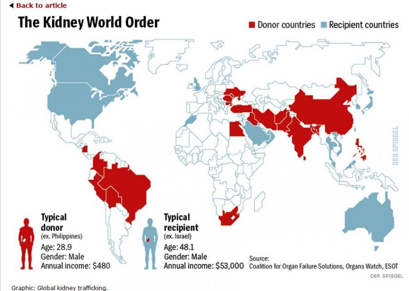 The Kidney World Order