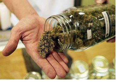 Pot Legalization Activists Target States For 2014