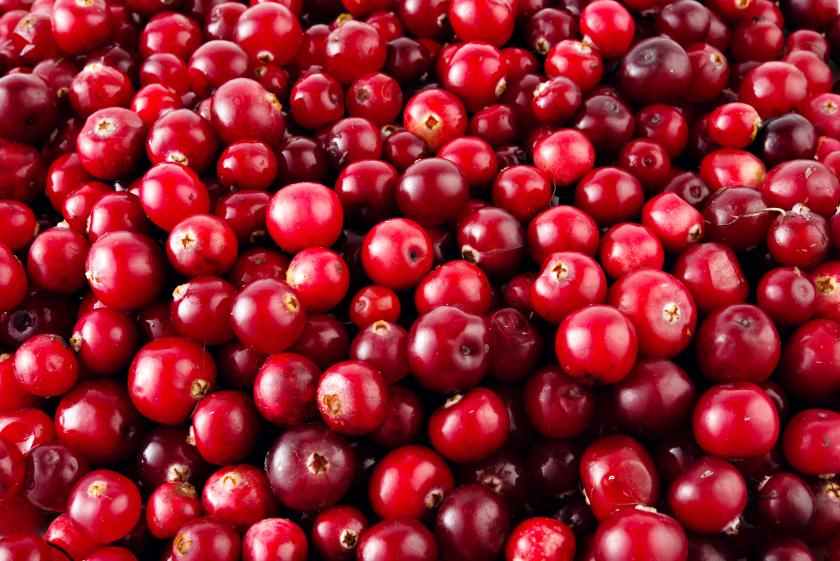 shutterstock photo of cranberries