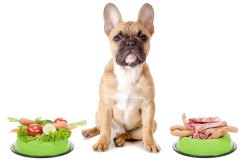 Dog with choice of meat or vegetable bowl