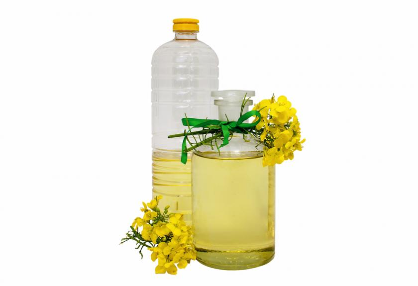 Canola Oil: Great for Type 2 Diabetes Patients