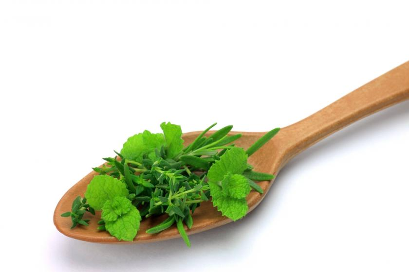 Oregano and Rosemary Help Diabetics Manage Blood Sugar
