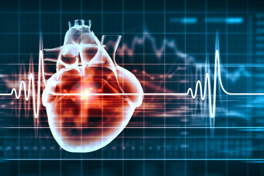 This Molecule Could Treat Heart Failure