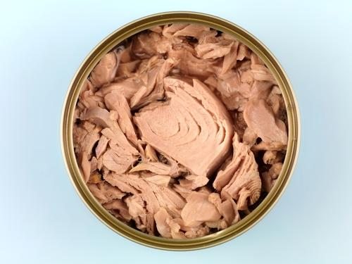 Image result for tuna in can