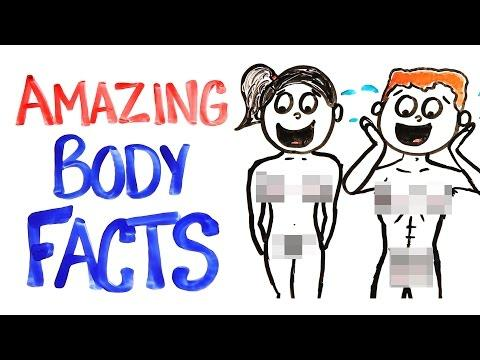 Human Anatomy Facts: The Amazing Abilities Of The Human Body, From Head To Toe