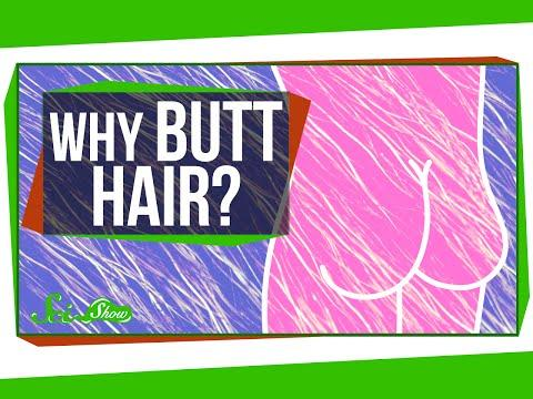 Anatomy And Physiology 101: Science Explains Why Butt Hair Exists On The Human Body