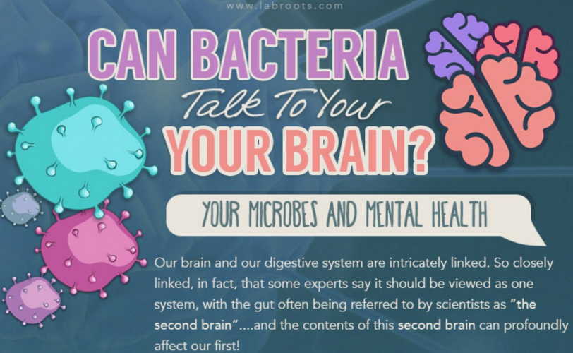 Bacteria and the brain