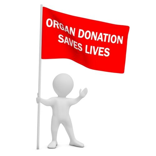 organs will save lives For some people with end-stage organ failure, it is truly a matter of life and death  add to these the thousands more whose lives will be improved through tissue.