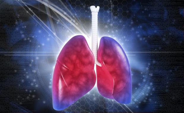 Theme simply adult lung transplants join. happens