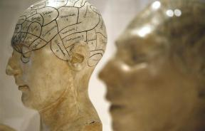 Plaster models of heads, showing different parts of the brain