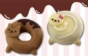 Cat-Donuts-1