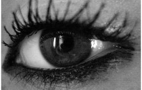 Mascara on a woman's eyes