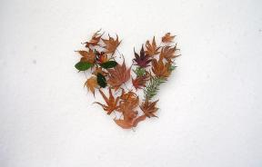 Heart of leaves in snow