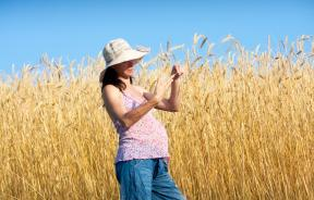 shutterstock photo of pregnant women in wheat field