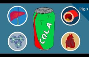 Your Body On Sugar: While Glucose Provides Energy, A High Fructose Diet Leads To Metabolic Syndrome