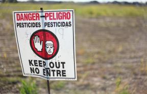 Pesticides And Lung Health