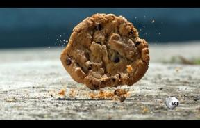 5-Second Rule Is Real: NASA Engineer Proves You Can Eat That Cookie After It Falls On The Ground