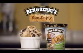 Ben & Jerry's Goes Dairy-Free: Vegans, The Lactose-Intolerant Can Now Enjoy The Popular Brand