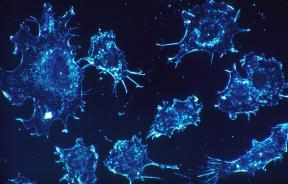 cancer-cells-