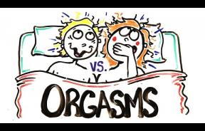 Male Vs Female Orgasm: Which Is Better?